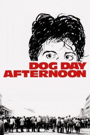 Köpeklerin Günü